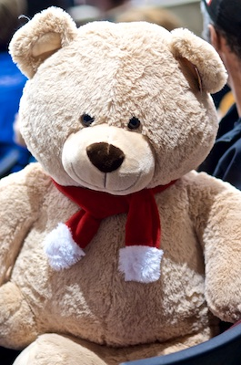 One of hundreds of stuffed animals that hit the ice when Jackson Houck scored at 2:18 of the third period. Photo by Jason Kurylo for Pucked in the head.