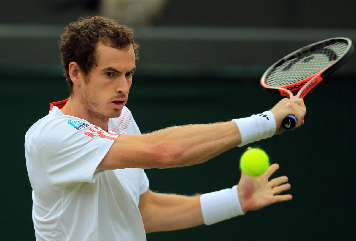 Image result for andy murray wimbledon images